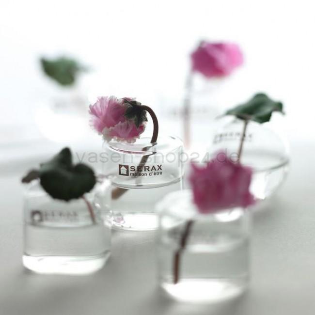serax mini vasen 6er set in 3 formen. Black Bedroom Furniture Sets. Home Design Ideas